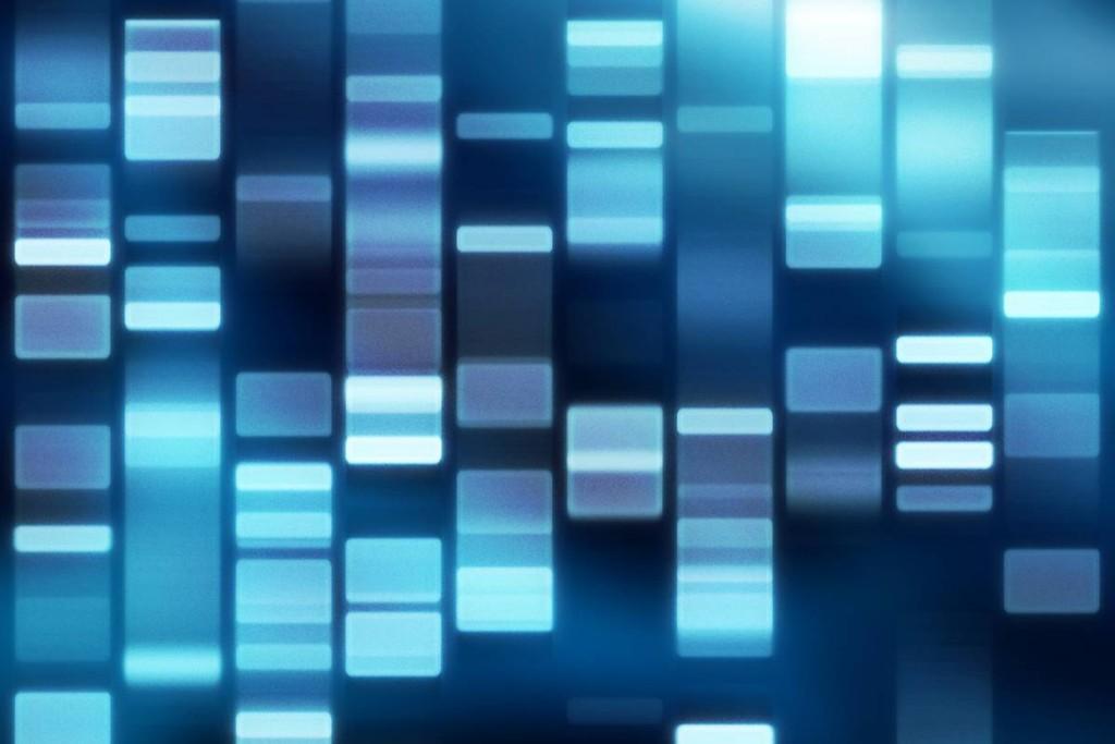 Unsere Gene
